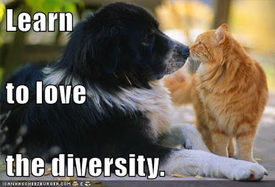 learn-to-love-the-diversity